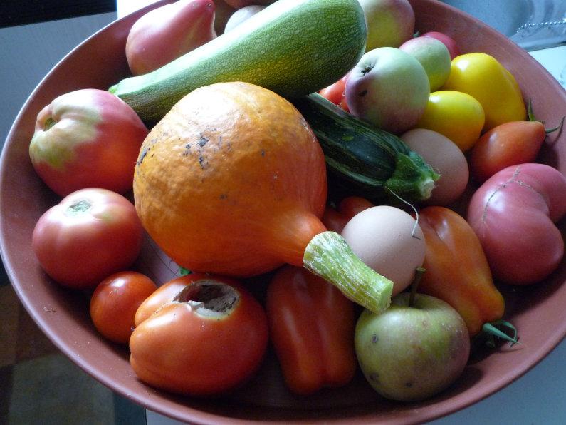 Kompostieren im Hausgarten – Obst und Gemüseverwertung